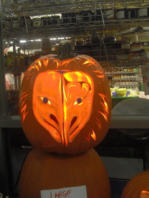Pumpkin Animal Head