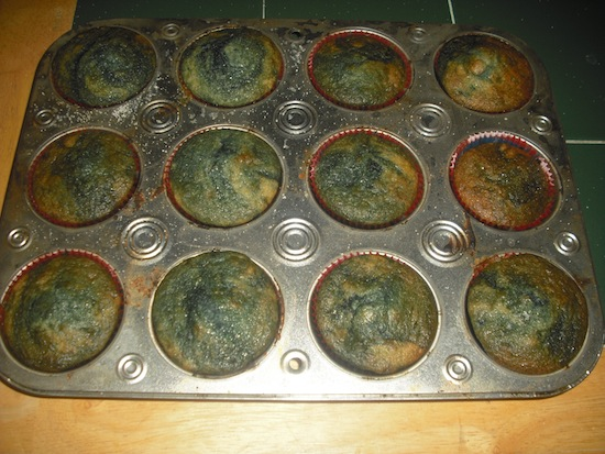 Gluten-free Blueberry Muffins Cooked