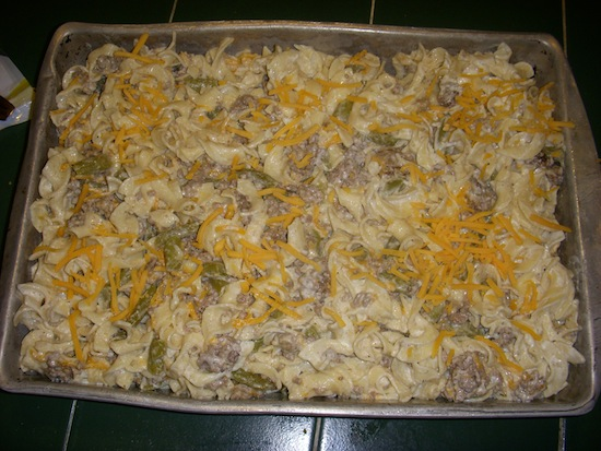 valmgs Sour Cream Green Bean Cheese Ground Beef Casserole