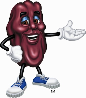 California Raisin Icon