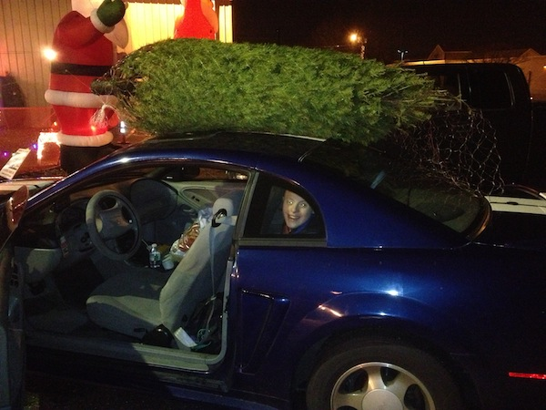 2013 Getting Our Christmas Tree