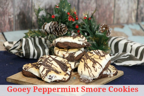 Gooey Peppermint Smore Cookies Recipe - From Val's Kitchen