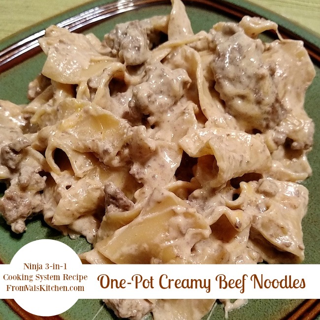 One-Pot Creamy Beef Noodles Recipe For Ninja 3-in-1 Cooking System From Val's Kitchen