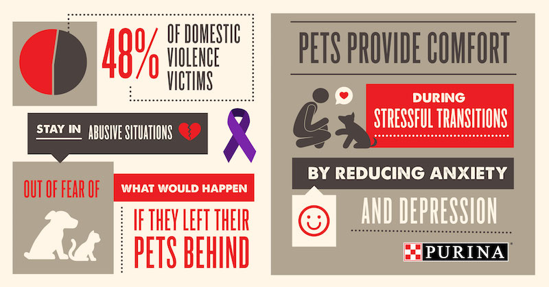 How Purina Helps Domestic Violence Victims and Their Pets Heal Together