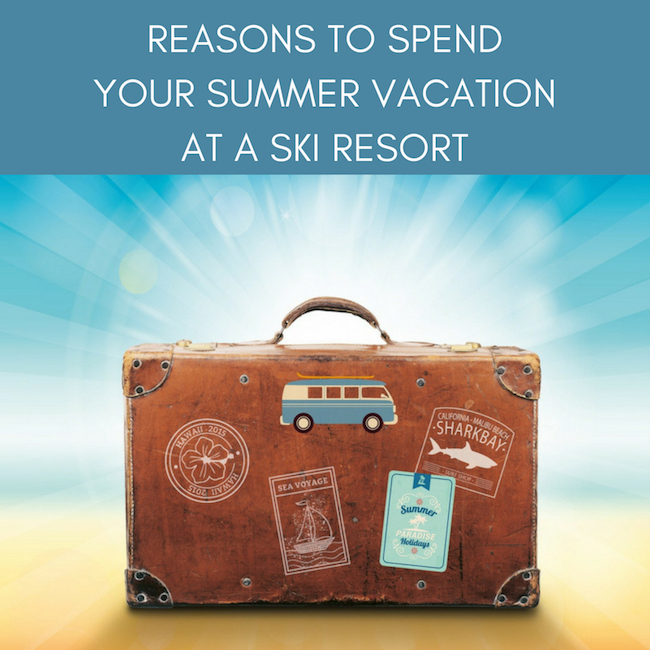 Reasons To Spend Your Summer Vacation At Ski Resort