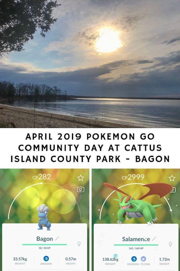 April 2019 Pokemon Go Community Day At Cattus Island County Park - Bagon