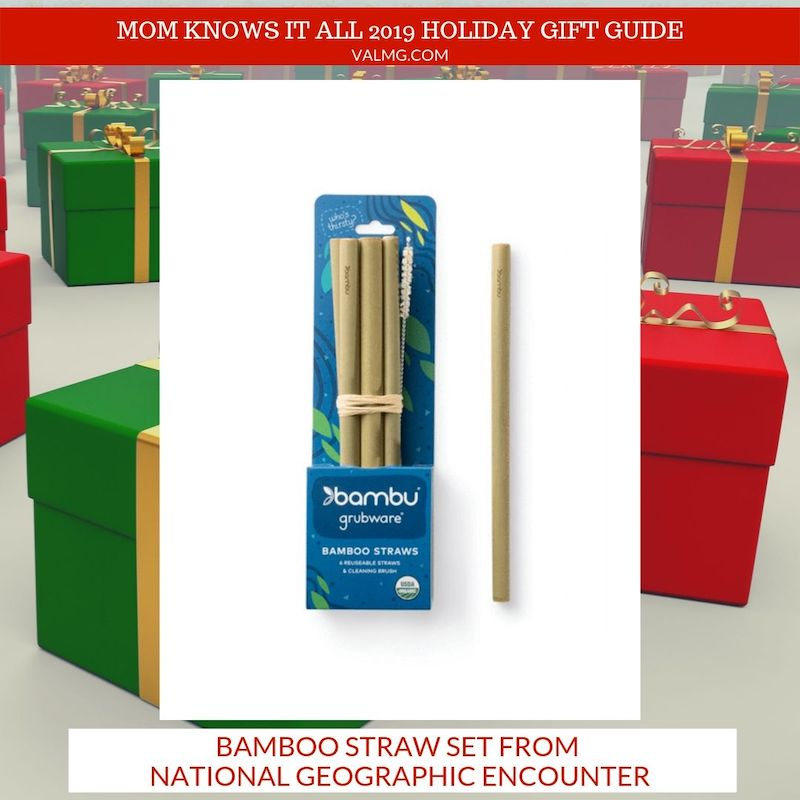 MOM KNOWS IT ALL 2019 HOLIDAY GIFT GUIDE - Bamboo Straw Set From National Geographic Encounter