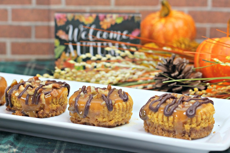 Pumpkin Turtle Cheesecake Bites Recipe From Val's Kitchen
