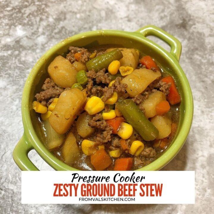 Pressure Cooker Zesty Ground Beef Stew
